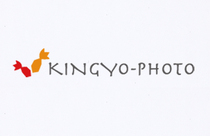 kingyo-photo様